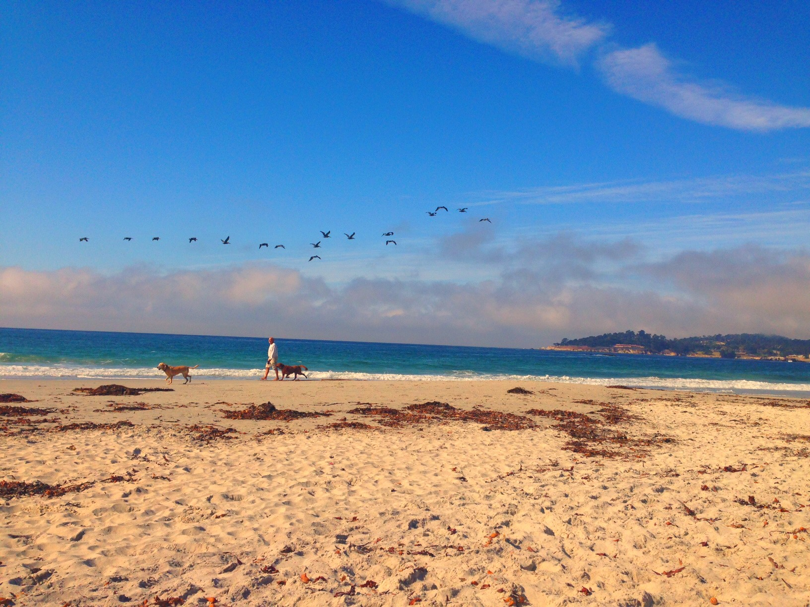 Travel Guide: A Weekend In Carmel-by-the-Sea