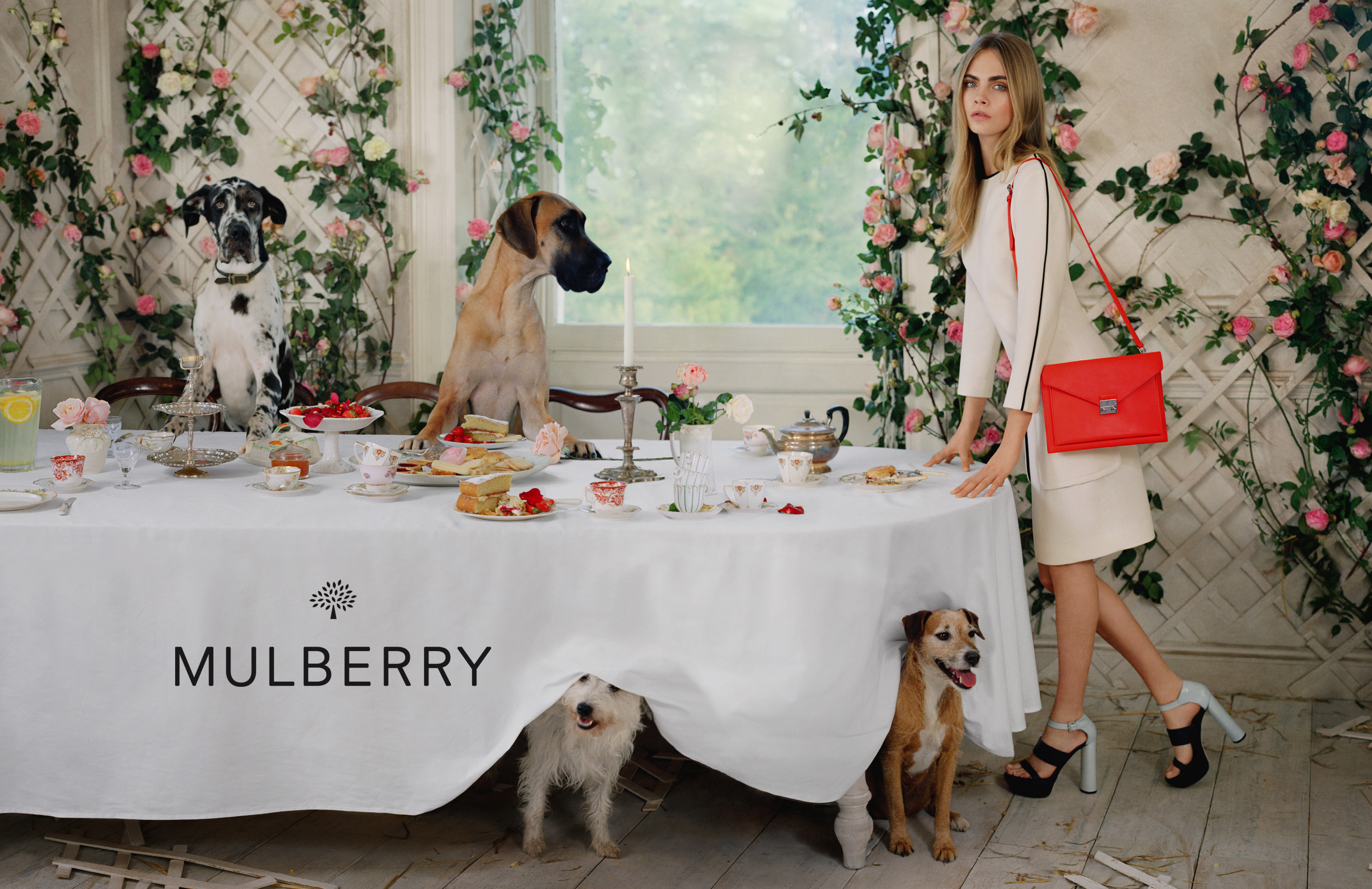 Mulberry SS14, Mulberry spring summer, Cara Delevingne Mulberry ss14, ad campaigns
