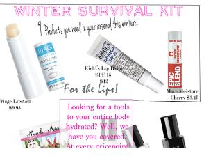 Winter Wonders: Survival Kit