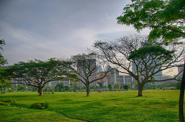 3 Reasons Singapore Should be on Your Travel Bucket List