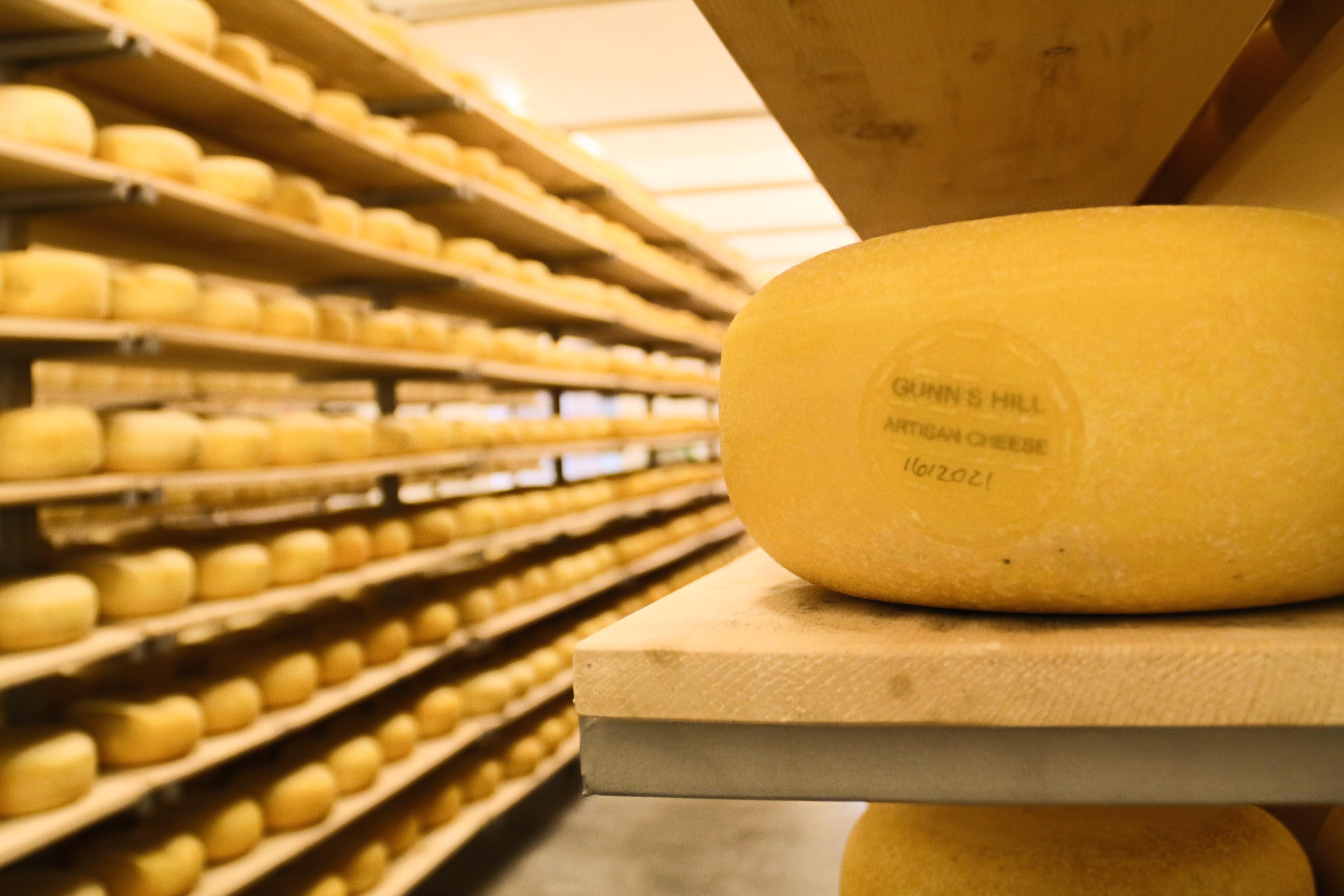 Oxford County Cheese Trail Gunn's Hill Cheese